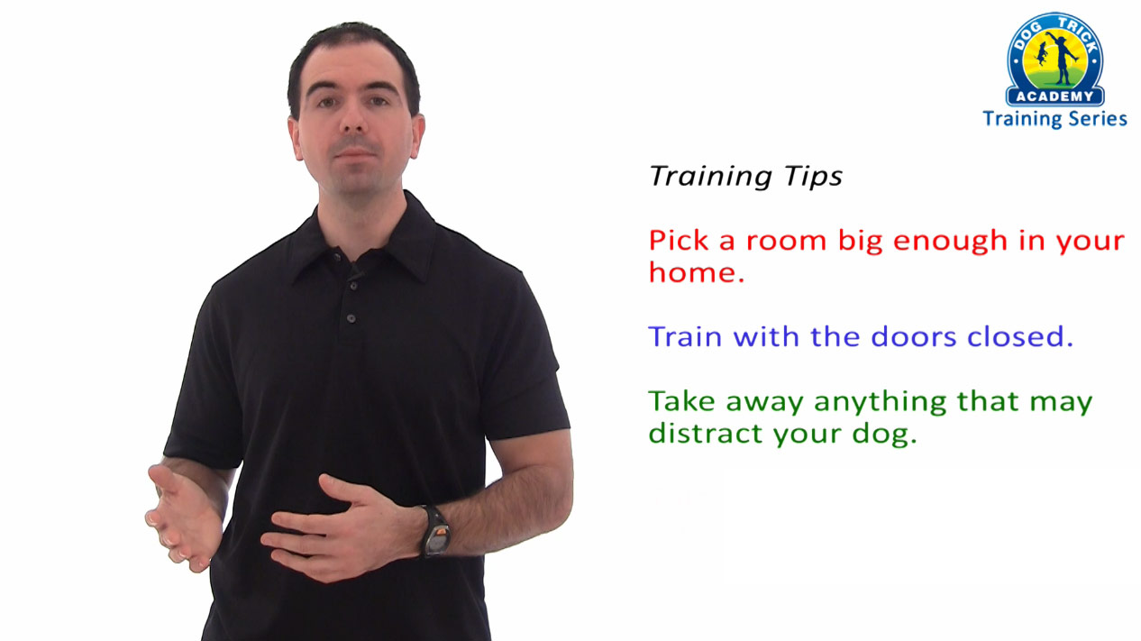 Slide From Dog Trick Academy Video Image